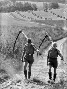 Hitler_Jugend_landdienst