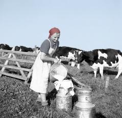 """Den tyske bondekvinne har aldri hatt det bedre enn i det nye Tyskland hvor realøkonomien blir prioritert til fordel for finansiell utbytting og """"vekst"""" i papirverdier (ved slavebinde folket i gjeld)."""